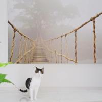 IKEAの大きなアートと玄関、猫 - ねことおうち