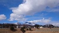 暖かい春の兆し続くといいなぁ~♪ - 浅間山眺めてほのぼのlife~花だより♪