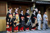 新年の挨拶回り(宮川町)その2 - 花景色-K.W.C. PhotoBlog