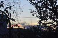 夕焼け空はなぜか侘しくてせつない、、、、、 - 生きる歓び Plaisir de Vivre。人生はつらし、されど愉しく美しく