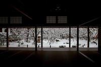 雪景色! ~圓光寺~ - Prado Photography!