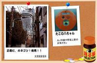 「見る薬」セレクション−2  - デジカメ散歩写真