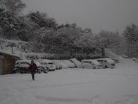 大雪の 秋葉まつり - 舞ときらりと琴