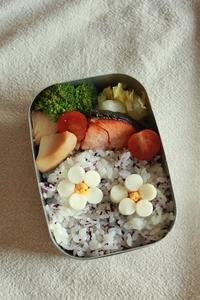ほほ6歳のお弁当は今日も昭和レトロです。 - はぐくむキッチン
