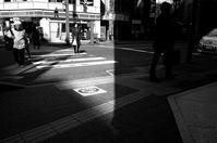 日差し - Yoshi-A の写真の楽しみ