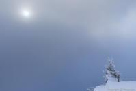 陽への想い - ひつじ雲日記