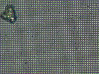 クロス回折格子フィルム - ミクロ・マクロ・時々風景