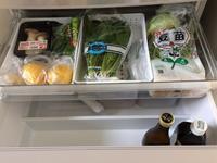 野菜室公開 - シンプル以上ミニマリスト以下