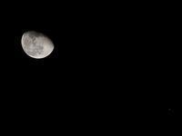 月と木星が接近しているから写真を撮ったのだが。。。 - 万願寺通信