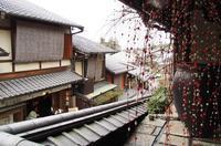 にぎやかな京都 - 好きな写真と旅とビールと