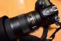 VR200-500mm/F5.6 - 淡路島の野鳥ブログ...++
