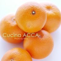 完全無農薬の八朔(はっさく)コンフィ - Cucina ACCA