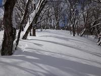 奥美濃大ダワ1087.5m東尾根・北面テレマーク - blog版 がおろ亭