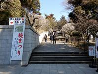 成田山新勝寺の公園は・・・ - 【出逢いの花々】