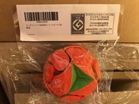 アマゾンでまたしてもラングスジャパンのパッケージをそのままコピーした偽物発見 - ラングスジャパン小林美紀ブログ