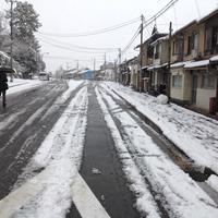 小正月 雪の京都 - MOTTAINAIクラフトあまた 京都たより