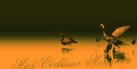 effect series  東方 ・・・・・・・ 鎮守の森 - みーすこるびじぇもんどりあん   -Mies Corbusier Mondrian-