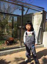 動物園 - 富士山周辺での暮らしの楽しみ方