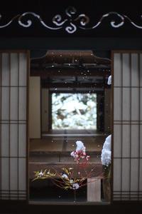雪景色! ~大徳寺塔頭 高桐院~ - Prado Photography!
