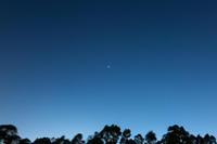 金星最大光度 - 撮って投げて進化する