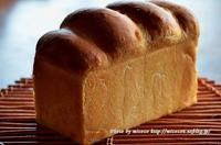 山食 - 森の中でパンを楽しむ