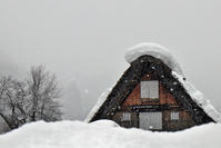 雪の白川郷 - like a rabbit ~ なんとなく、lonely?