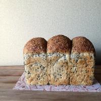 ゴマ山食 - そぼくなおかし。パン。