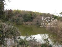 野鳥の見分け方 - yamatoのひとりごと
