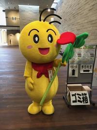 第24回豊中ボランティア・フェスティバル - 大阪北摂のノルディック・ウォーク!TERVE北大阪のブログ