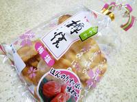 【三幸製菓】越後樽焼 梅塩 - 池袋うまうま日記。
