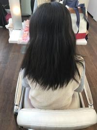 自分でお手入れできないからこそ小学生でも縮毛矯正ですっきりしましょうね(^^♪ - 浜松市浜北区の美容室 SKYSCAPE(スカイスケープ) 店長の鶸田(ひわだ)のブログです