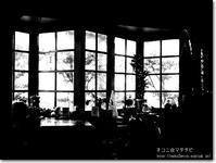 【お】お気に入りの店:おきにいりのみせ - ネコニ☆マタタビ
