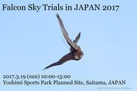 【告知】Sky Trials in Japan 2017 開催決定 - 新米ファルコナー(鷹匠)の随想録