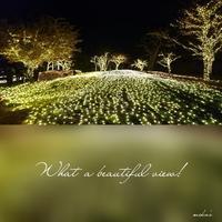 「光のフィナーレ」⑨湘南の宝石を見に 2017.2.17 - わたしの写真箱 ..:*:・'°☆