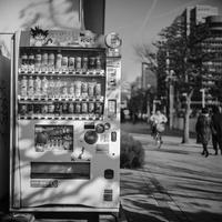 2017年2月21日 自販機にまとわりつく光蜥蜴 - Silver Oblivion