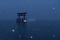 今年最後の雪景色 - toshi の ならはまほろば