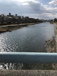京都五日目 - ソラネコ写真館