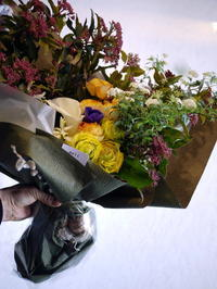 球根付きのヒヤシンスを使った花束。お誕生日の男性へ。西岡3条にお届け。 - 札幌 花屋 meLL flowers