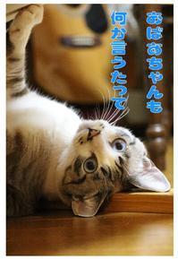 我が家の作画監督の「君の名は。」の三葉ちゃん - ぎんネコ☆はうす