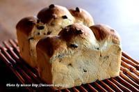 レーズン食パン - 森の中でパンを楽しむ