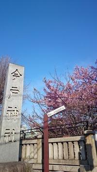 From Office #47 - RABOKIGOSHI STAFF BLOG