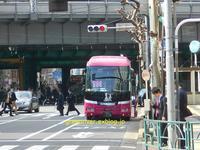 降車専用バス停にベストエスコート - 注文の多い、撮影者のBLOG