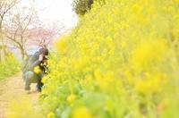 春を感じて - GreenLife