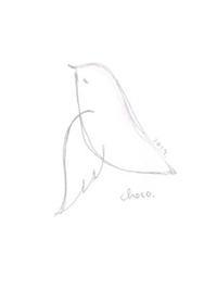 春の鳥 - chocotto*cafe