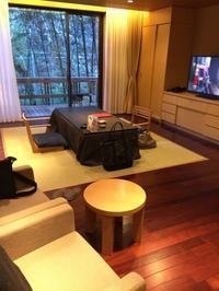 箱根へ 翠松園 お部屋とエステ - お昼寝ねこねこの日々。