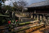 元興寺の花たち - 鏡花水月