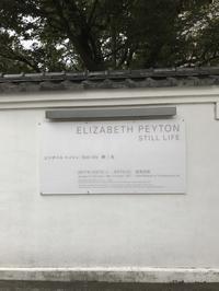 Elizabeth Peyton : still life  静 / 生 - Les jours de la violette
