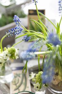 ふんわり仕上げ♪ - 幸せのテーブル*flowertuft-flowers&tablesXphoto