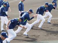 椎間板ヘルニアの川端慎吾選手、手術不要も2軍調整へ/キャンプフォトその2 - Out of focus ~Baseballフォトブログ~