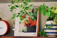 2/13 飾り棚に本 そしてウロウロ - 「あなたに似た花。」